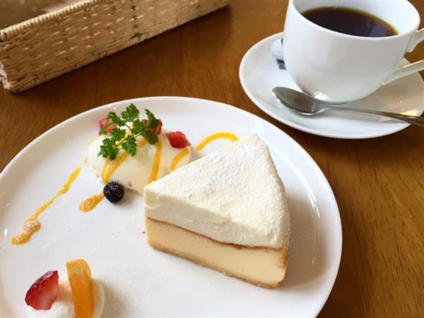 【指宿】色々な種類のチーズケーキが揃う可愛らしいカフェ