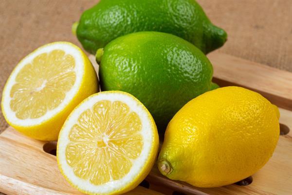 行楽の秋♪阿久根でとっても珍しい「レモン狩り」はいかが??